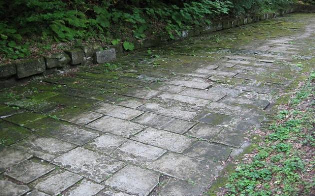 Drumul construit de daci spre Sarmisegetusa în urmă cu 2000 de ani,