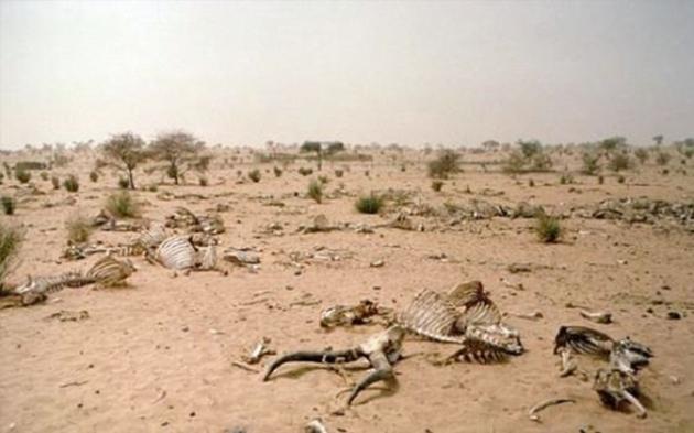 Secetă prelungită care a dus la moartea a mii de animale și a strămutat numeroase sate din Iran, Irak și Afganistan