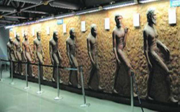 Incursiune în istoria evoluției umane